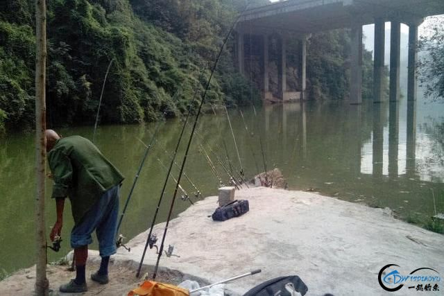 作为一个钓鱼爱好者,你一个月钓几次鱼-3.jpg