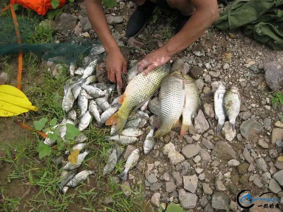 作为一个钓鱼爱好者,你一个月钓几次鱼-9.jpg