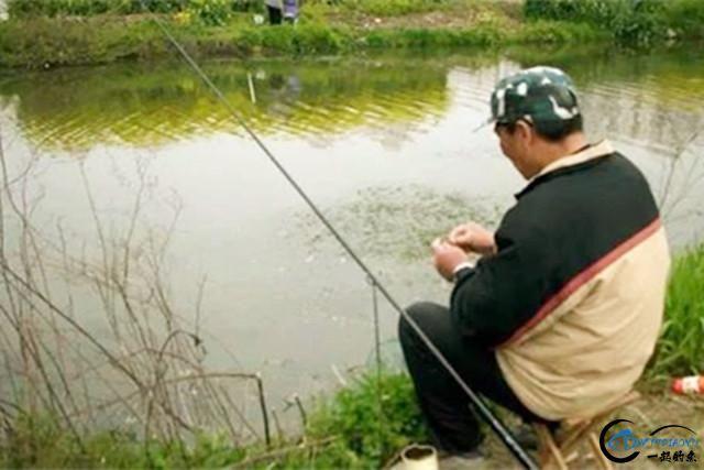 秋季钓鱼打窝技巧分析详解,简单掌握,鱼获翻倍!-3.jpg