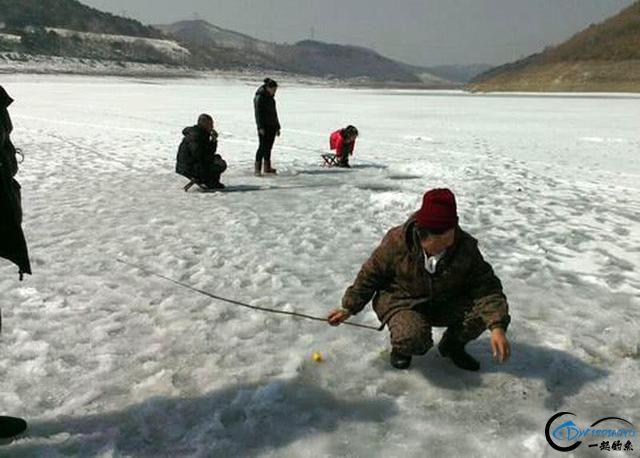 """在北方冰钓""""小公鱼""""要是碰上鱼窝,那杆就根本停不下来-12.jpg"""