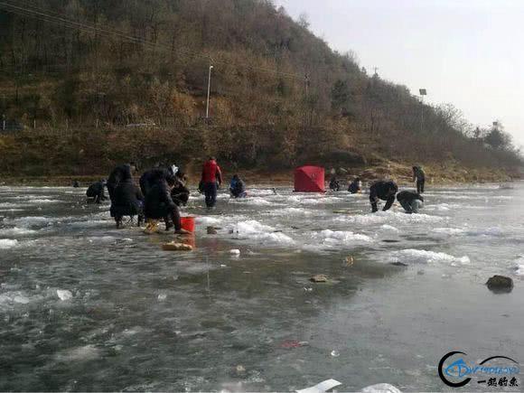 """在北方冰钓""""小公鱼""""要是碰上鱼窝,那杆就根本停不下来-19.jpg"""