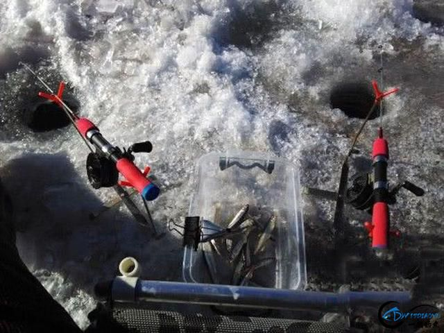 """在北方冰钓""""小公鱼""""要是碰上鱼窝,那杆就根本停不下来-15.jpg"""