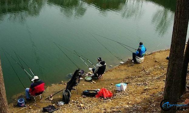 没想到200多元的鱼竿,也能钓到17.6斤的大鱼,你知道为什么吗?-2.jpg