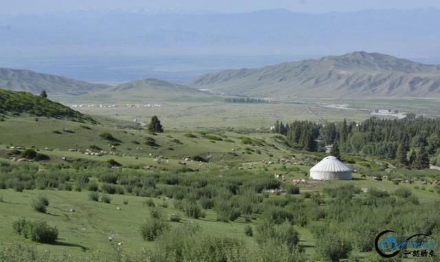 新疆钓鱼的风景太美了,我自己都没勇气看-13.jpg