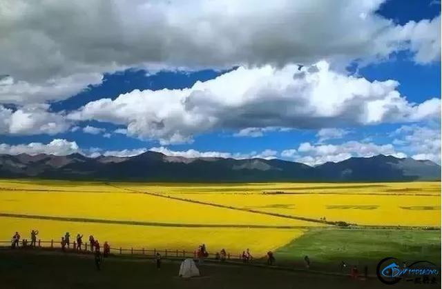 中国最美的夏天,梦境中的香巴拉,中国的小马代,国内都可以看到-7.jpg