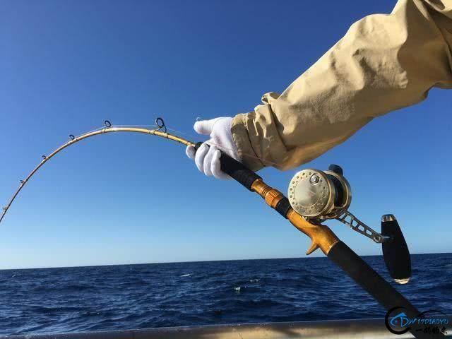钓到大鱼兴奋的拉出水瞬间惊出一身冷汗,大鱼被吃的仅剩鱼头-8.jpg