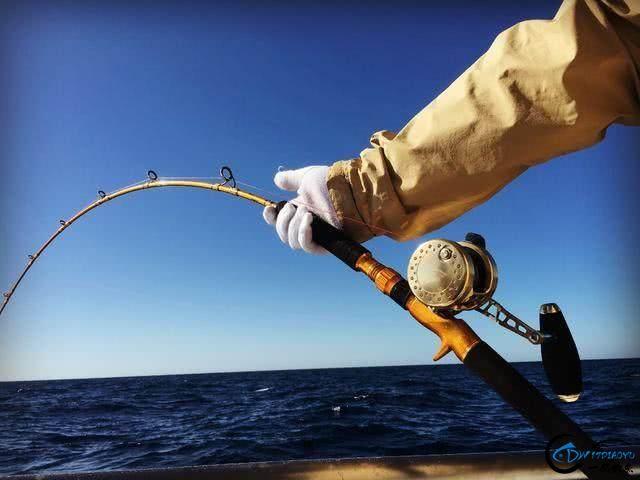 钓到大鱼兴奋的拉出水瞬间惊出一身冷汗,大鱼被吃的仅剩鱼头-7.jpg