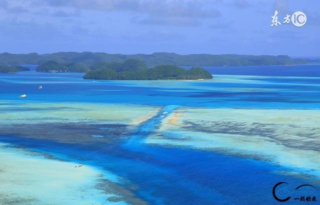 水陆空,浪在帕劳……-3.jpg