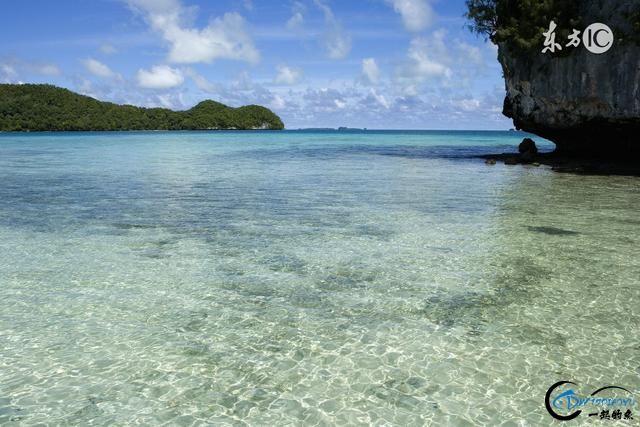 水陆空,浪在帕劳……-4.jpg