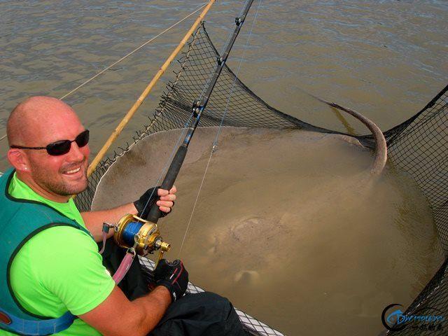 世界最巅峰的湄公河魔鬼鱼挑战赛,中国钓鱼人竟还是一片空白-9.jpg
