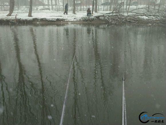 这位钓友应该称得上是勇士了吧,下这么大的雪还依然出门钓鱼!-1.jpg