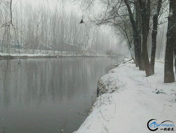 这位钓友应该称得上是勇士了吧,下这么大的雪还依然出门钓鱼!-2.jpg