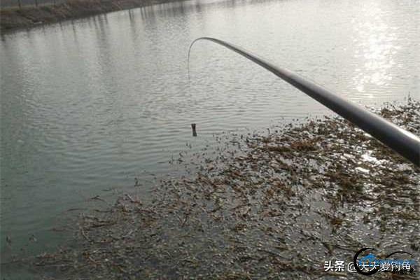 冬季钓鱼,如何找到鱼的藏身之地-2.jpg