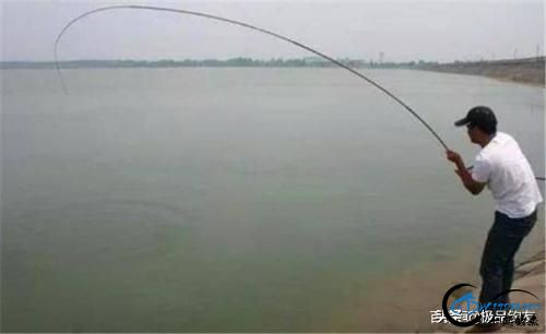 钓鱼:遛鱼是一门大学问-3.jpg