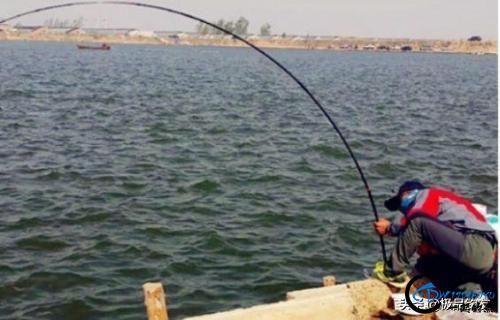 钓鱼:遛鱼是一门大学问-4.jpg