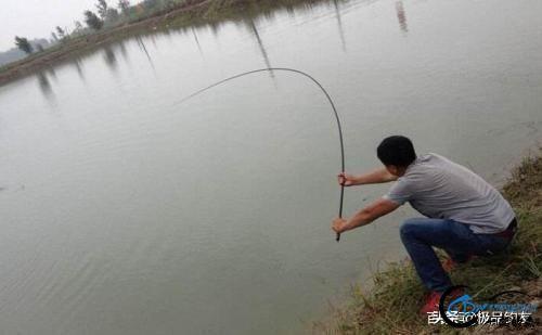钓鱼:遛鱼是一门大学问-6.jpg