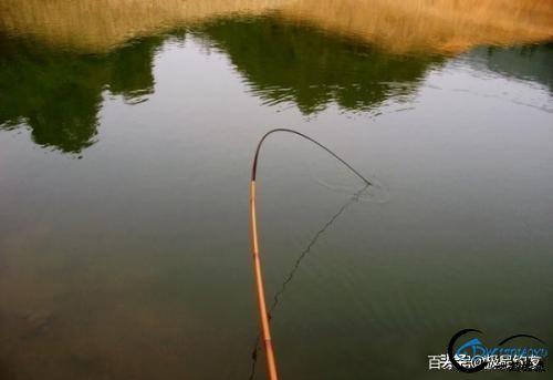 钓鱼:遛鱼是一门大学问-7.jpg