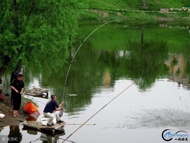 钓鱼人千万别小看开饵料的水,用对了才能爆护,用错了只能空军!-4.jpg