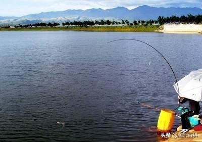 气压因素是影响垂钓效果的关键之一,气压高低与钓鱼有什么关系?-2.jpg