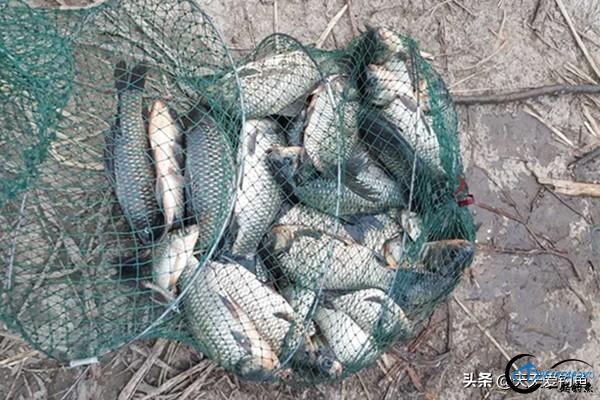 冬季钓鱼,大小水域应该如何选?-1.jpg