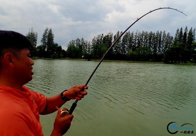 湄公河才是亚洲最终极的钓场,一不小心就会钓获这些水中巨怪-2.jpg