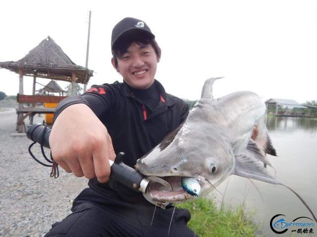湄公河才是亚洲最终极的钓场,一不小心就会钓获这些水中巨怪-23.jpg