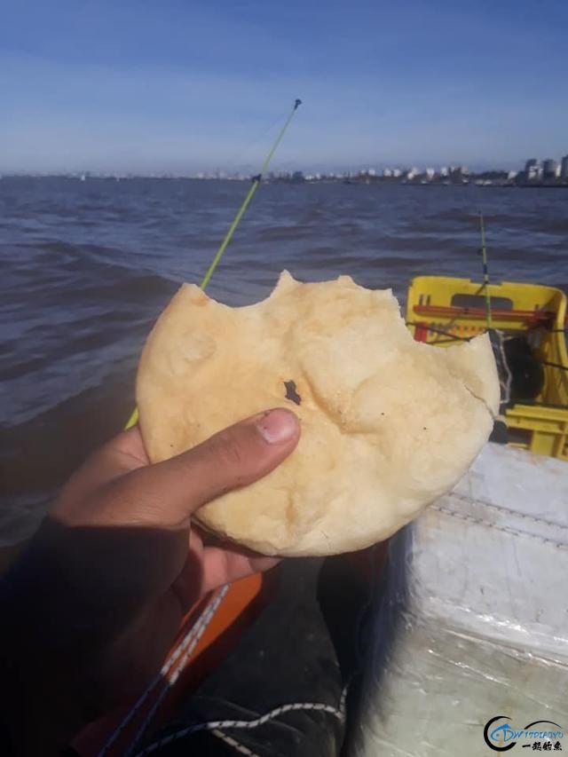 你真的相信国外钓鱼人最后会将渔获放生吗?别傻啦,你上当了-17.jpg