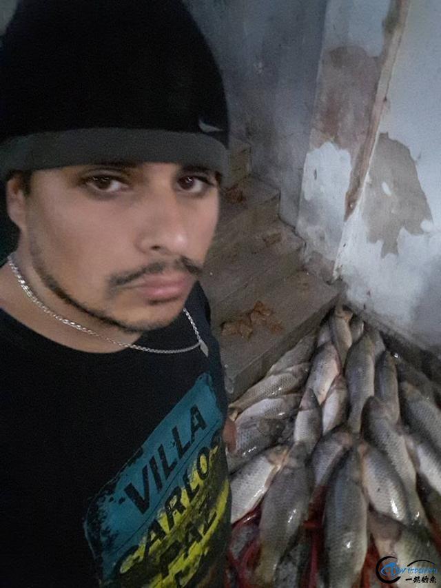 美国泛滥的亚洲鲤鱼好日子这次真的结束了,被消灭只是时间问题-14.jpg