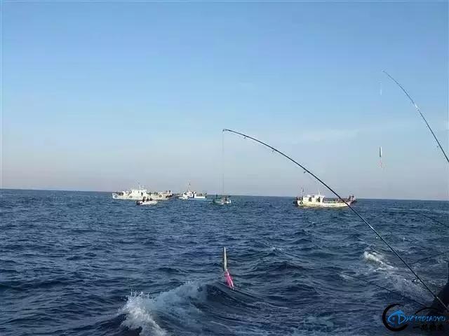 海钓人,想收获多多的、学学经验的举爪!-10.jpg