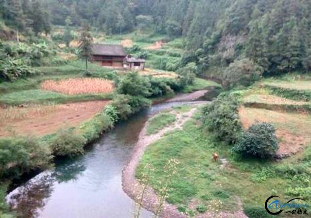 打工仔回到家乡,再钓一次故乡河里的小鱼-2.jpg