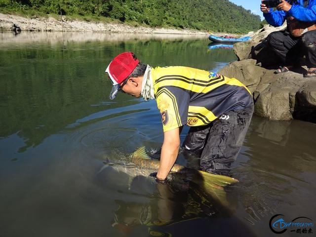 有幸钓过这种鱼的人非富即贵,家里没矿就别妄想能有机会去钓-17.jpg
