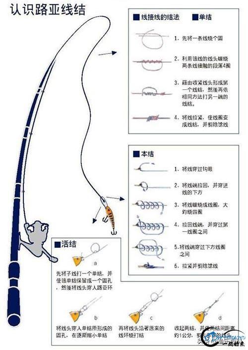 最全路亚入门:路亚竿、路亚轮、主线、前导线、拟饵等的动态绑法-1.jpg
