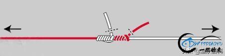 最全路亚入门:路亚竿、路亚轮、主线、前导线、拟饵等的动态绑法-4.jpg