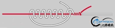 最全路亚入门:路亚竿、路亚轮、主线、前导线、拟饵等的动态绑法-3.jpg