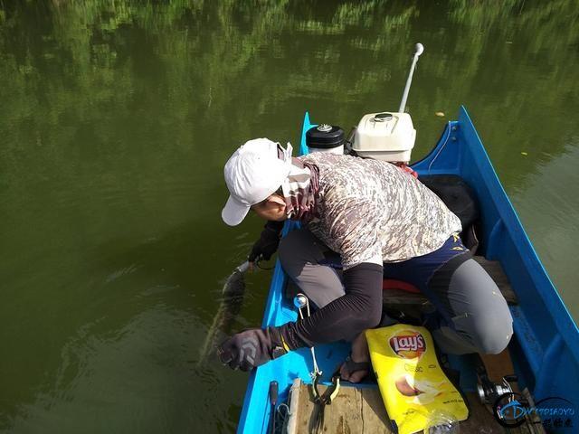 中国路亚钓鱼人远征苏门答腊,前去消灭泛滥成灾的金线多曼鱼-6.jpg