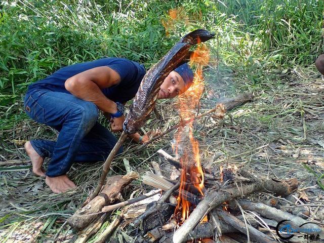 中国路亚钓鱼人远征苏门答腊,前去消灭泛滥成灾的金线多曼鱼-23.jpg