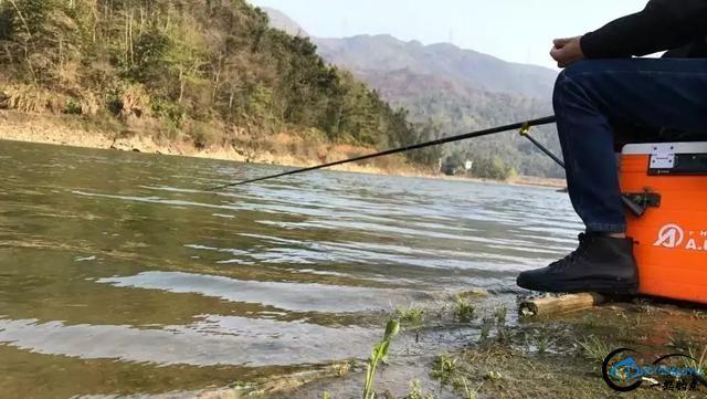 钓鱼人说的那些术语,钓鱼少了都听不懂-2.jpg