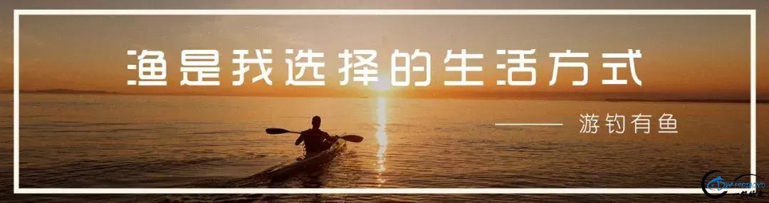 钓鱼人说的那些术语,钓鱼少了都听不懂-1.jpg