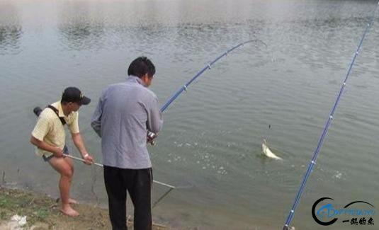 你在钓鱼时是否遇到跑鱼的现象?实战分析原因及应对办法-7.jpg