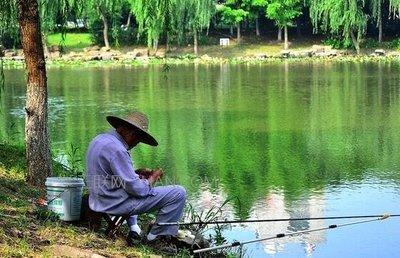 为什么钓鱼会上瘾,不是因为自制力不足,而是人类的本能驱使-2.jpg