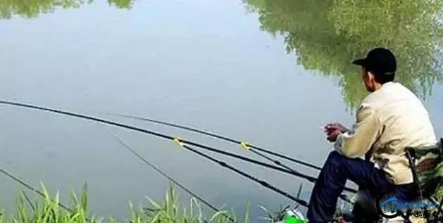 为什么钓鱼会上瘾,不是因为自制力不足,而是人类的本能驱使-6.jpg