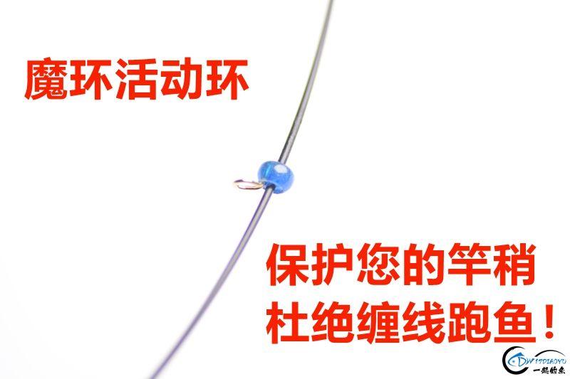 DSC_1462_副本.jpg