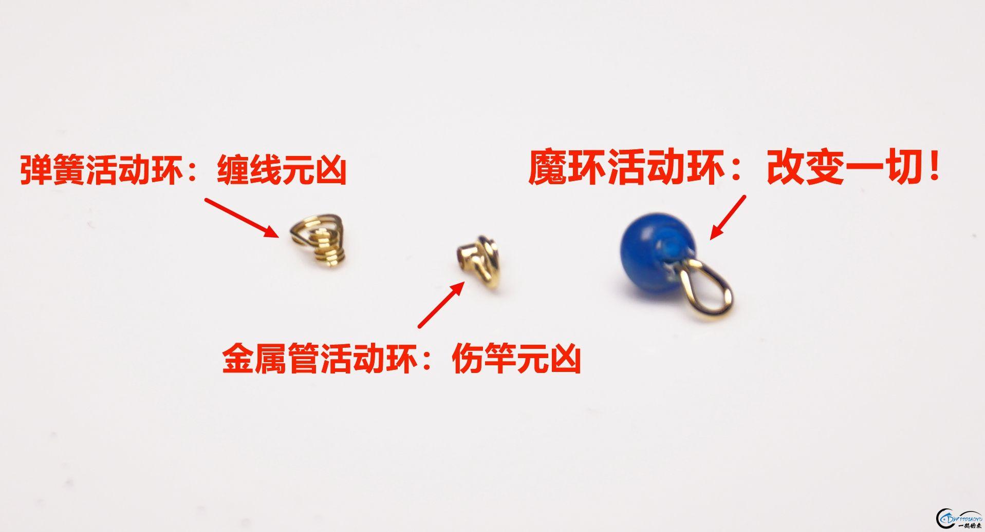 DSC01494_副本.jpg