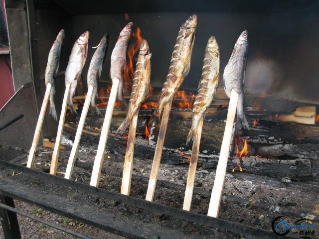 有幸目睹美味面包蟹的捕捞全过程,做成麻辣蟹我能吃一船!-16.jpg