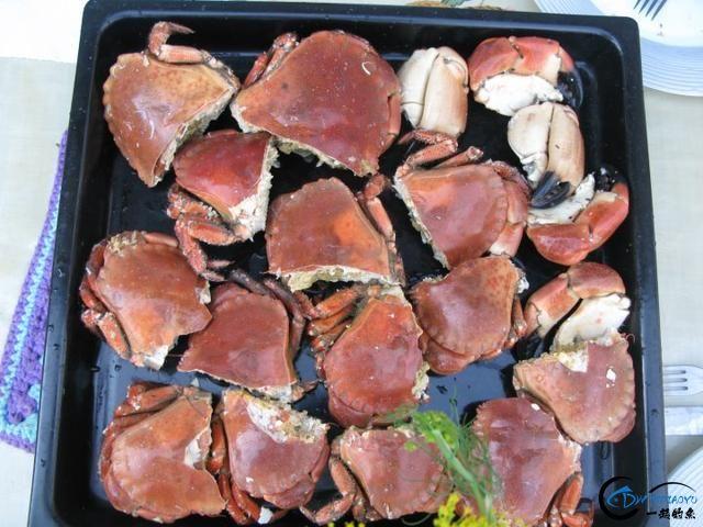 有幸目睹美味面包蟹的捕捞全过程,做成麻辣蟹我能吃一船!-13.jpg