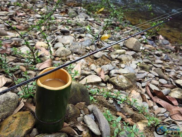 这到底是钓鱼呢还是荒野求生啊?难怪一些钓鱼人都越来越胖了-5.jpg