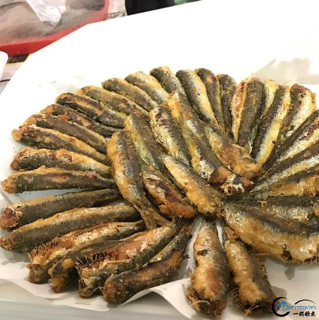 网友建议美国引进中国大厨来消灭亚洲鲤鱼,美国大厨表示抗议-5.jpg