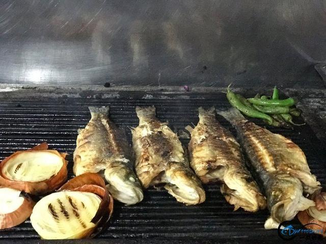 网友建议美国引进中国大厨来消灭亚洲鲤鱼,美国大厨表示抗议-18.jpg
