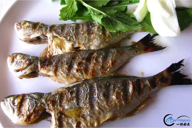 网友建议美国引进中国大厨来消灭亚洲鲤鱼,美国大厨表示抗议-19.jpg