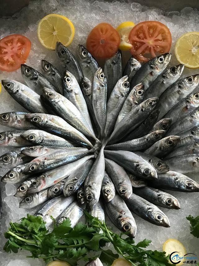 网友建议美国引进中国大厨来消灭亚洲鲤鱼,美国大厨表示抗议-9.jpg